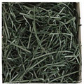 Hunter Green Veryfine Filler Shred - One 10lb Box