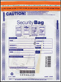Single Pocket Money Handling Bag Clear Small 9 x 12 - 100 bags
