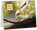 Flower Gift Card Carriers, 6.5 x 4 Flat, 250 Carriers/Holders