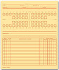 Dental Exam Record System C Folder Style - 100 Folders