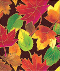 Autumn Leaves Gift Wrap 24