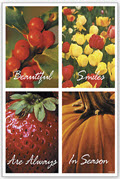Dental Postcards Beautiful Smiles - 200 PostCards