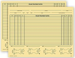 Veterinary Exam Records Feline Two Sided - 100 forms