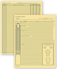 Chiropractic Exam Records Spinal Diagram, Card File Fold - 100 records
